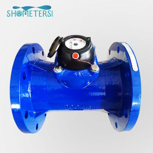 Irrigation Horizontal Vane Wheel Dry-dail Cold(hot) Water Meter